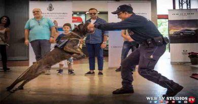 Napoli: Motorexperience con la Polizia Penitenziaria reparto Cinofili