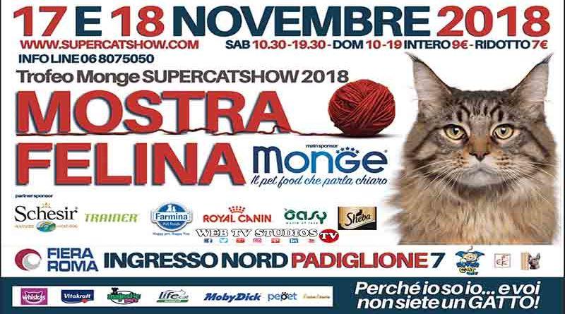 Torna a Roma Supercat Show, Mi Ci Porti?