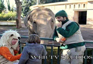 Bioparco di Roma: domenica 23 febbraio 2020, Carnevale con tutti i bambini mascherati da animali a €10